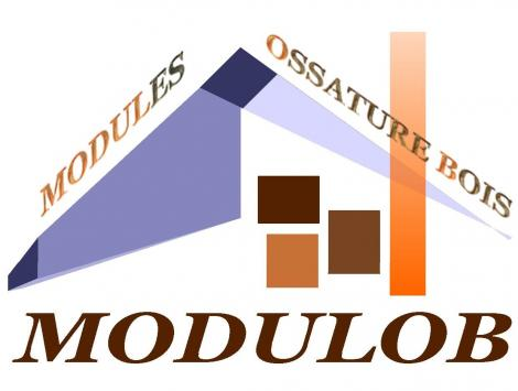 Logo modulob 2