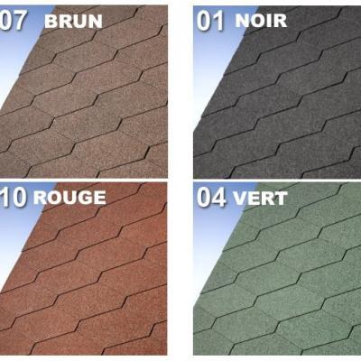 Shingle Roof  : COTON 5